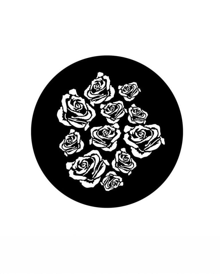 steel gobo breakup roses